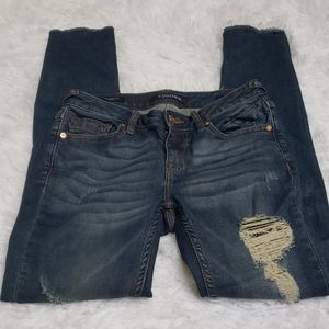 Vigoss The Chelsea distressed skinny jeans